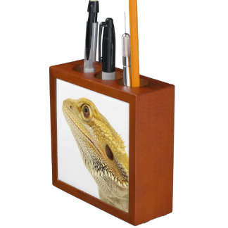 Bearded dragon (Pogona Vitticeps) Desk Organiser