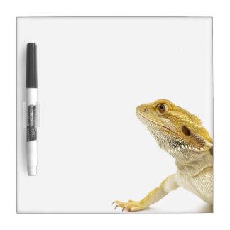 Bearded dragon (Pogona Vitticeps) Dry Erase Board