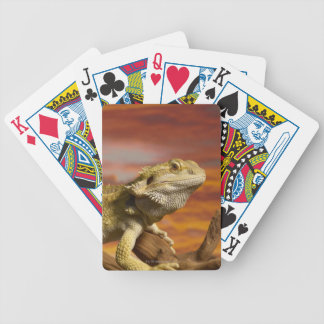 Bearded dragon (Pogona Vitticeps) on branch, Bicycle Playing Cards