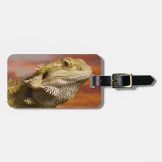 Bearded dragon (Pogona Vitticeps) on branch, Luggage Tag