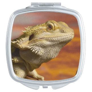 Bearded dragon (Pogona Vitticeps) on branch, Mirrors For Makeup