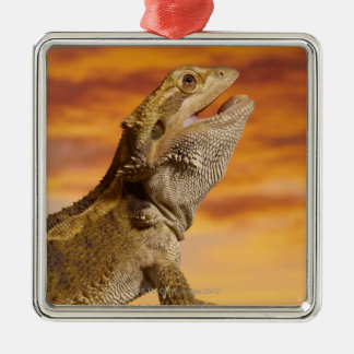 Bearded dragon (Pogona Vitticeps) on rock, Christmas Ornament