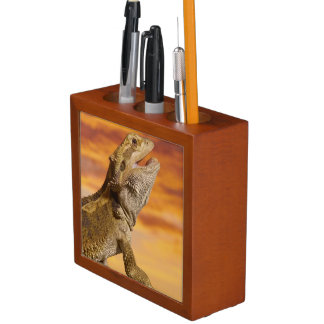 Bearded dragon (Pogona Vitticeps) on rock, Desk Organiser
