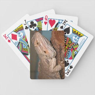 Bearded Dragon Poker Deck