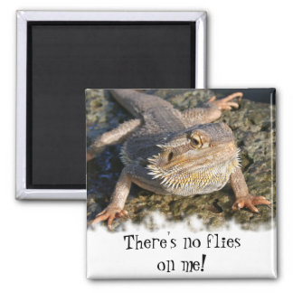 Bearded Dragon Series Magnet
