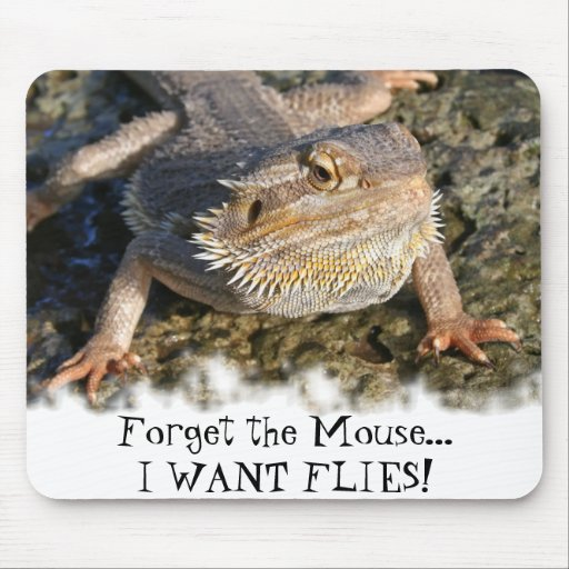 Bearded Dragon Series Mouse Pad