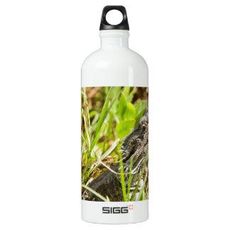Bearded Dragon SIGG Traveller 1.0L Water Bottle