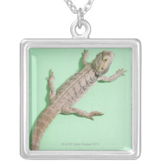 Bearded dragon silver plated necklace