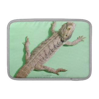 Bearded dragon sleeve for MacBook air
