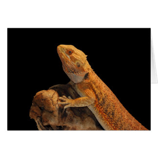 Bearded Dragon – Standing Tall and Proud Greeting Card