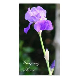Bearded Iris business cards