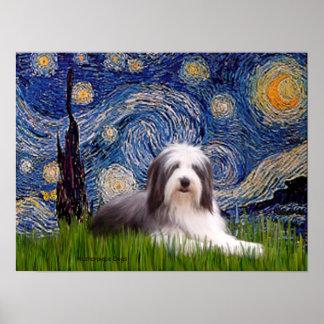 Beardie 2 - Starry Night Poster
