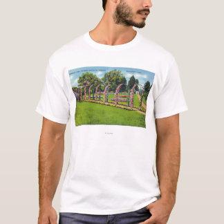 Beardsley Park View of the Botanical Gardens T-Shirt