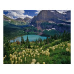 Beargrass above Grinnell Lake in the Many