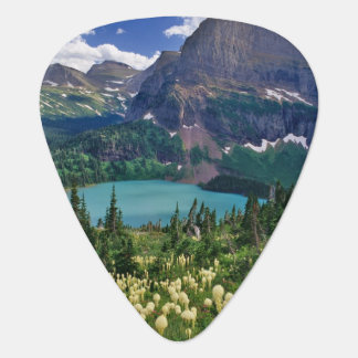Beargrass above Grinnell Lake in the Many Guitar Pick