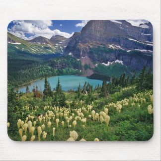 Beargrass above Grinnell Lake in the Many Mouse Mat