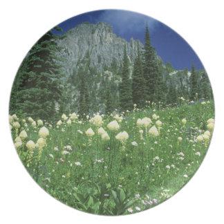 Beargrass at Eunice Lake, Mt. Rainier NP, WA, Plate