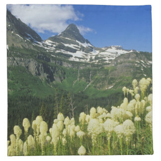 Beargrass near Logan Pass in Gacier National Napkin