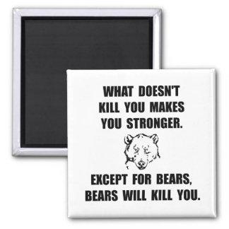 Bears Kill Square Magnet