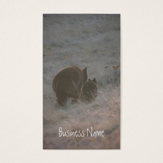 Bears Walking at Sunset; Promotional Business Card