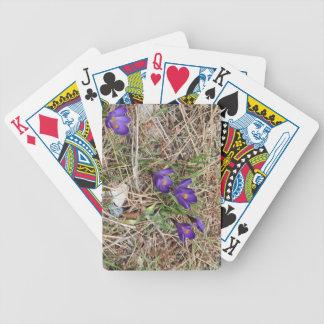 Beatiful Purple Mountain Iris 2 Bicycle Card Decks