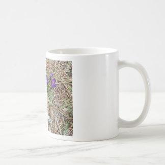 Beatiful Purple Mountain Iris 2 Coffee Mug