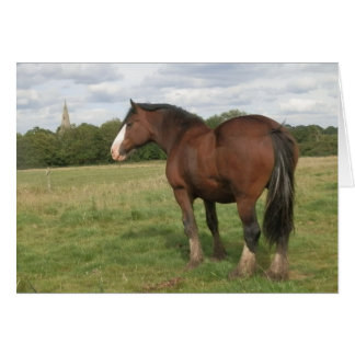 Beatrice - Shire Horse Greeting Card