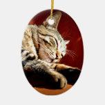 Beau chat tigré décoration pour sapin de noël