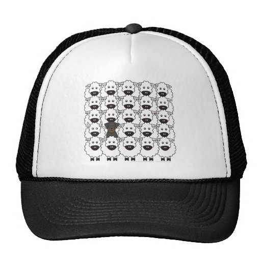 Beauceron in the Sheep Trucker Hat