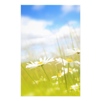 Beautifufl spring meadow background stationery