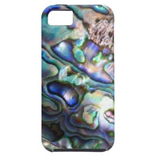 Beautiful abalone shell iPhone 5 case