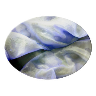 Beautiful Abstract Nature White and Blue Porcelain Serving Platter