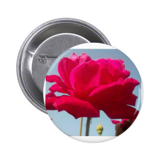 Beautiful Amazing Hakuna Matata Rose For the Bride Buttons