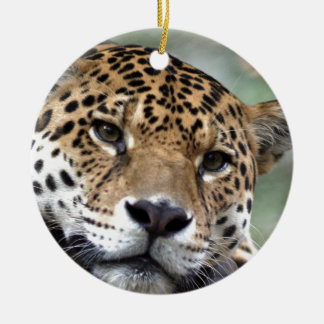 Beautiful Amazon jaguar Christmas Ornament