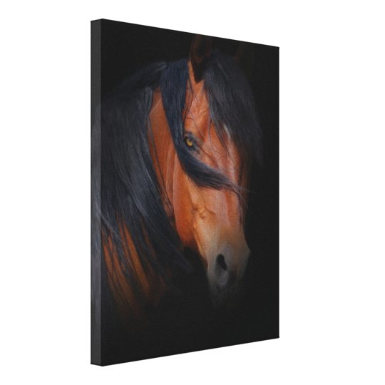 Beautiful and Dramatic Horse Art on Canvas Canvas