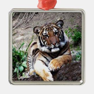 Beautiful and Majestic Bengal Tiger Custom Christmas Ornament