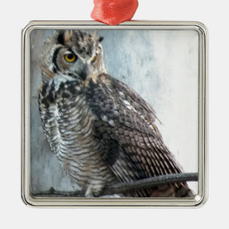 Beautiful and Regal Female Great Horned Owl Square Metal Christmas Ornament