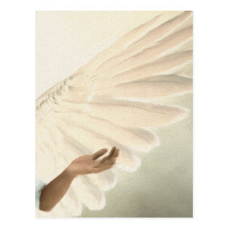 Beautiful Angel Wings - Caring & Calm Postcard