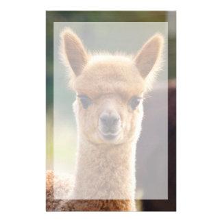 Beautiful Animal Alpaca Stationery