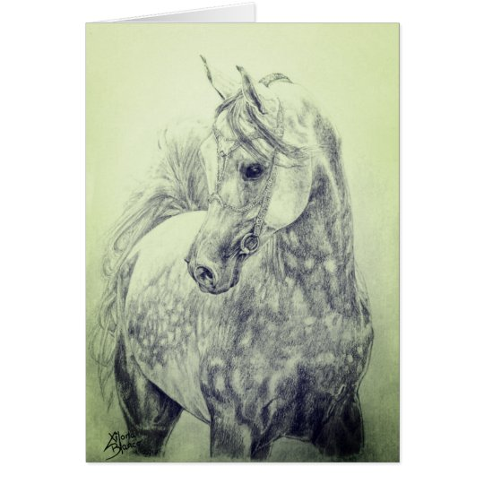 Beautiful Arab Horse - hand drawn Card