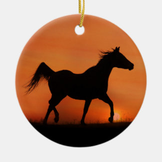 Beautiful Arabian Horse Ornament