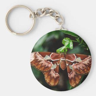 Beautiful Atlas Moth Key Chains