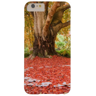 Beautiful Autumn Fall Nature Fairy Ring Barely There iPhone 6 Plus Case