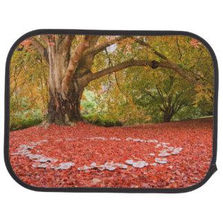 Beautiful Autumn Fall Nature Fairy Ring Car Mat