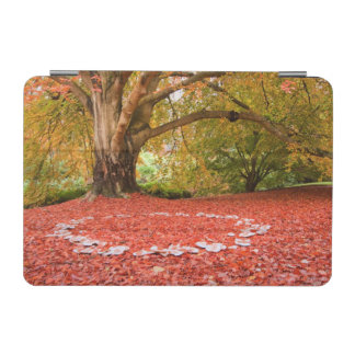 Beautiful Autumn Fall Nature Fairy Ring iPad Mini Cover