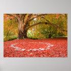 Beautiful Autumn Fall Nature Fairy Ring Poster