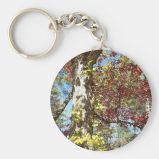 Beautiful Autumn Leaves Key Ring