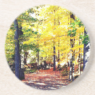 Beautiful Autumn Path Coaster