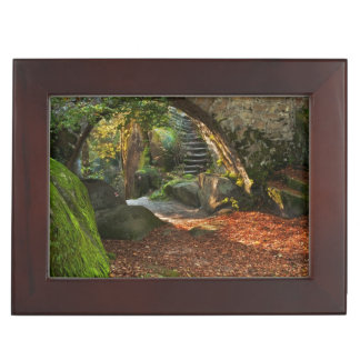 Beautiful Autumn Scene Memory Boxes