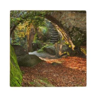 Beautiful Autumn Scene Wood Coaster